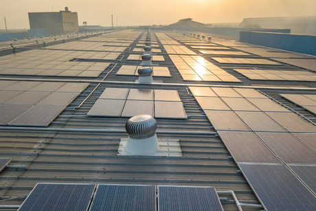 Dynamic Cables, SunAlpha team up to commission 1200kW solar project