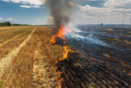 Tata Projects to execute bio ethanol project for reducing agri waste burning