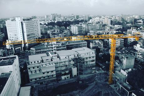 Cranes: Standing tall