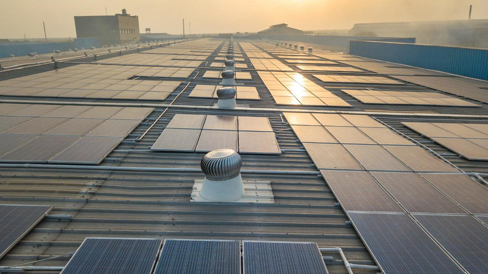 Rajasthan, Dynamic Cables, Cables & conductors, SunAlpha Energy, Rooftop solar power project, Jaipur, Reengus, Carbon emissions, Rajasthan solar net-metering policy, Ashish Mangal, Raghav Mittal, Mangal Group of Companies