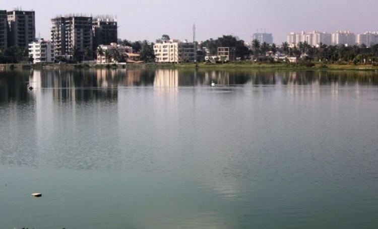 Prestige Estates, RMZ Corp, Commercial project, Bengaluru, Karnataka, Mantri Developers, National Green Tribunal, Ecologically sensitive wetlands, Century Real Estate, Agara development plans