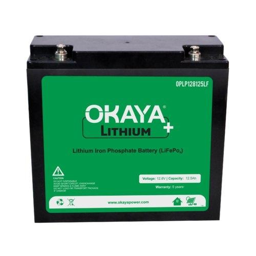 Okaya Power, Bharat Heavy Electricals Limited, BHEL, 410 KWH Lithium ion Battery Energy Storage System, Delhi, TERI project, Anshul Gupta, Aatmanirbhar Bharat