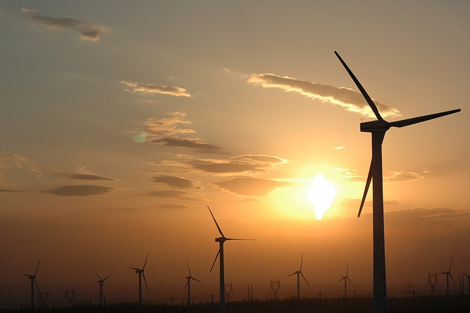 Adani Green Energy (MP) commissions 50 MW wind power project